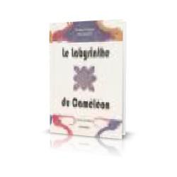 9.LE LABYRINTHE DU CAMELEON...